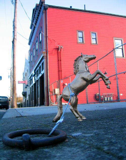 horseproj1.jpg
