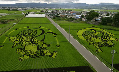 rice_art2.jpg