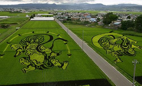 rice_art2.jpg