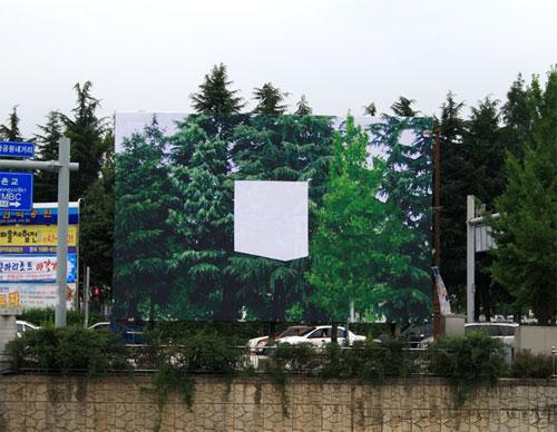 treesbox.jpg