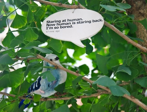 Bird_Twitterx1100.jpg