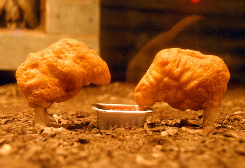 """The village petstore & charcoalgrill"" Chicken1"