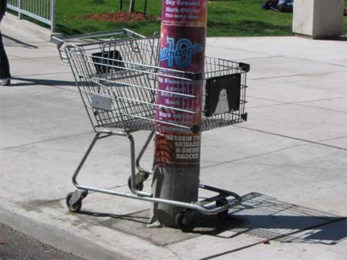 cartpole2.jpg
