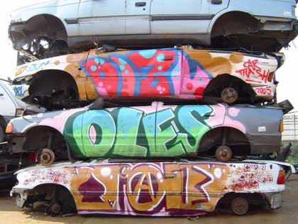 2009 Ford Flex Art Car Lee