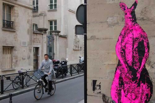 pink-roo-bike-close.jpg