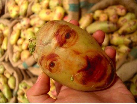 potatoface2.jpg