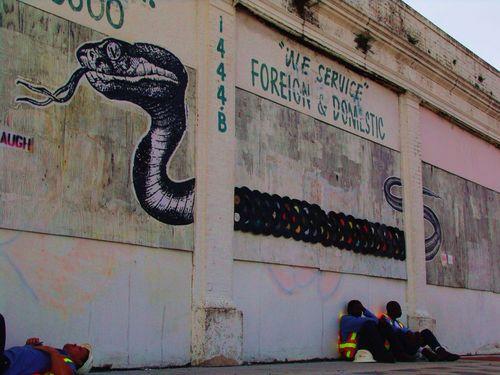 snakerec.jpg